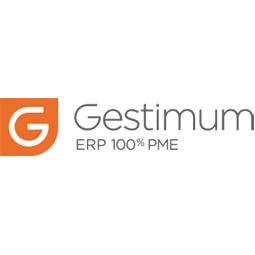 logo-gestimum